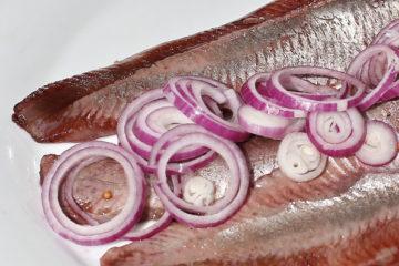 Degustazione Aringa